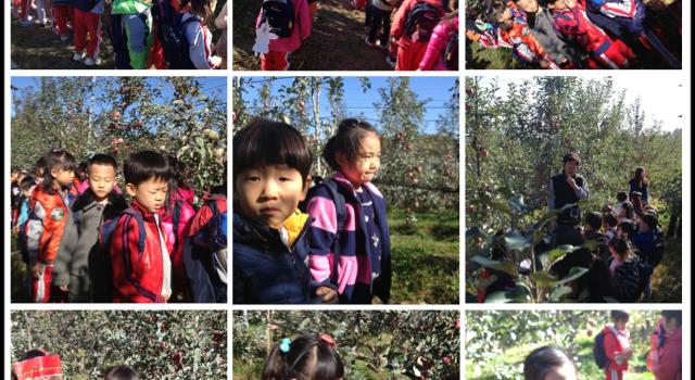 상주 감꽃 유치원 친구들이 다녀갔습니다.