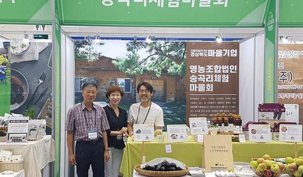 2019 제 1회 대구경북 사회적경제박람회 참가